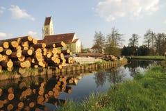 Logarithmes naturels de bois de construction Photo libre de droits