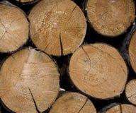 Logarithmes naturels empilés de bois de construction Photos libres de droits
