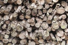 Logarithmes naturels empilés de bois de construction Photos stock