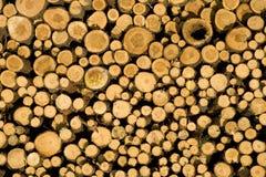 Logarithmes naturels empilés de bois de construction, biomasse Image stock