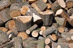 Logarithmes naturels en bois photos stock