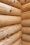 Logarithmes naturels en bois Images libres de droits