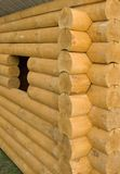 Logarithmes naturels en bois Photos libres de droits