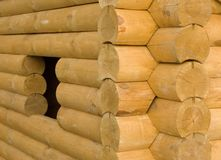 Logarithmes naturels en bois Photographie stock