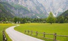Logarska dolina/ Logar valley, Slovenia Royalty Free Stock Image