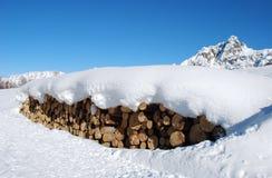 Logboek en sneeuw 2 Stock Fotografie