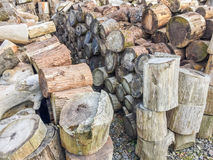 Logboek van hout Stock Afbeeldingen
