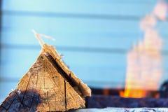 Logboek van hout op de achtergrond van brand Stock Afbeelding