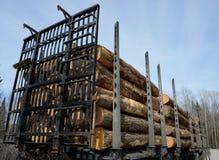Logboekaanhangwagen met logboeken wordt geladen dat stock foto