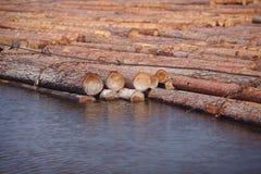 Logboeken die op rivier drijven Royalty-vrije Stock Afbeeldingen