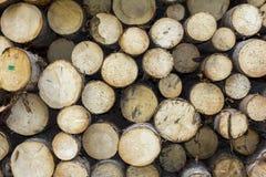 Logboeken van hout in een zaagmolen worden gestapeld die royalty-vrije stock afbeelding