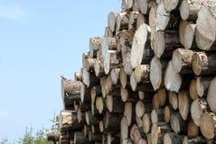 Logboeken van hout met een blauwe hemel op een achtergrond worden gestapeld die Royalty-vrije Stock Afbeelding