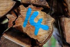 Logboeken van hout, nummer veertien royalty-vrije stock fotografie