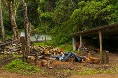 Logboeken voor brandhout worden gesneden dat Royalty-vrije Stock Afbeeldingen