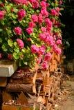 Logboekstapel en geraniums Stock Afbeeldingen