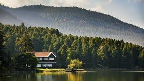 Loge de lac Images libres de droits