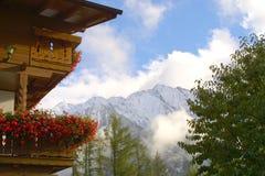 Loge de montagne - fleurs Photo libre de droits