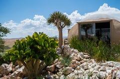 Loge med sikt på ett ökenlandskap nära patiensen, Namibia royaltyfri bild