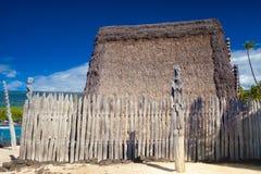 Logements hawaïens de toit couvert de chaume Image stock