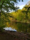 Loges& x27 ; forêt de s photographie stock