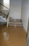 Logez entièrement en crue pendant l'inondation de la rivière image libre de droits