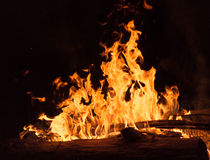 Logfire Camp Flames from Wood Royalty Free Stock Photo