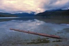Logga in den grunda sjön Fotografering för Bildbyråer