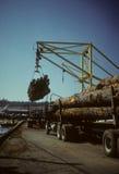 loggad lastbilavlastning för kran arkivbild