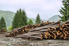 Loggande in Tatra berg, Slovakien Arkivbilder