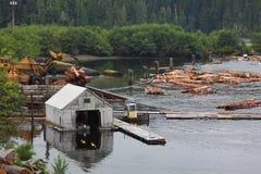 Logga sorterar, den Vancouver ön, British Columbia Royaltyfria Foton
