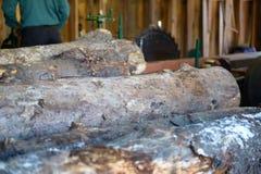 Loggar in ett sågverk Royaltyfria Bilder