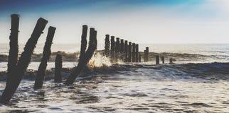 Loggar in havet Arkivbild