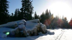Loggar in snö fotografering för bildbyråer