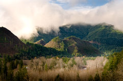 Logged mountains. Mountain hillsides that have been logged Royalty Free Stock Photography