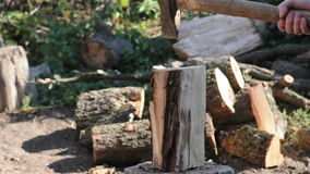 Logger Cutting Log stock footage