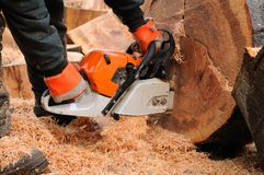 Logger With Chainsaw. Royalty Free Stock Photos