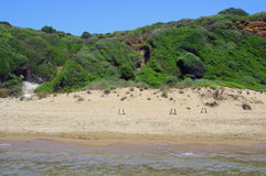 Loggerhead sea turtle nests (Caretta Caretta) Stock Photo
