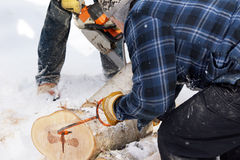 Loggers Stock Photography
