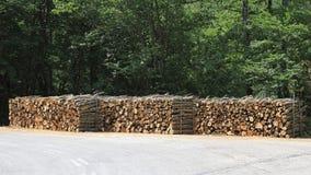 logging стоковое фото rf