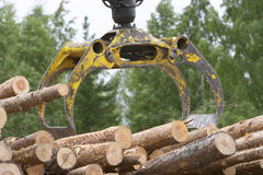 Logging. Woodwork royalty free stock images