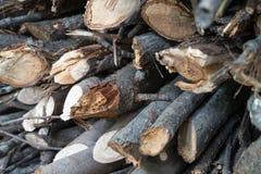 logging стоковые фотографии rf
