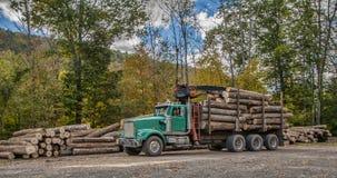 logging Стоковые Изображения RF