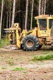 logging стоковое фото