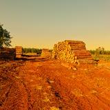 logging стоковое изображение rf