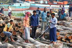 Logging business. Men working at a sawmill in Bangladesh making sure the logs are moved up from the water Stock Photography