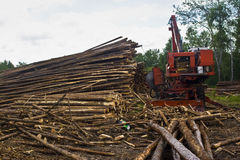 Logging with crane  Royalty Free Stock Image