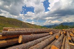Logging , Demanovska Dolina , Slovakia Stock Photos