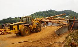 Logging Forklift Loading royalty free stock image