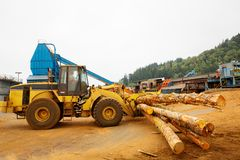 Logging Forklift at Mill Stock Images