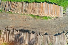 Logging, log cabin trunks of conifers, top aerial view.  royalty free stock photography